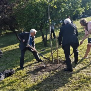 A fiúk meg a Kati már nagyon akartak ásni egy kicsit, hogy a három fa rendesen el legyen ültetve