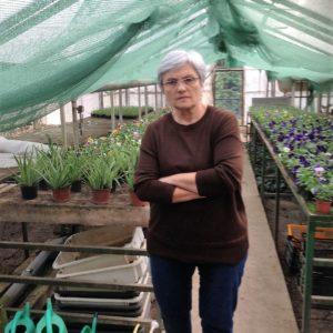 A CIVITAN kertészet hátrányos helyzetű fiatalokat foglalkoztat